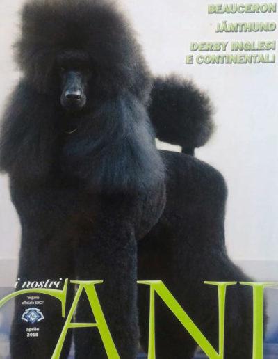 rivista-cani-2
