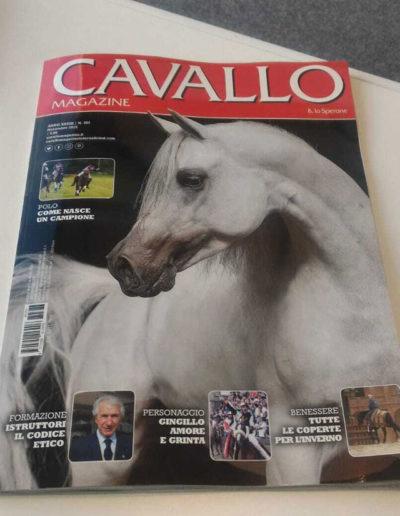 rivista-cavallo
